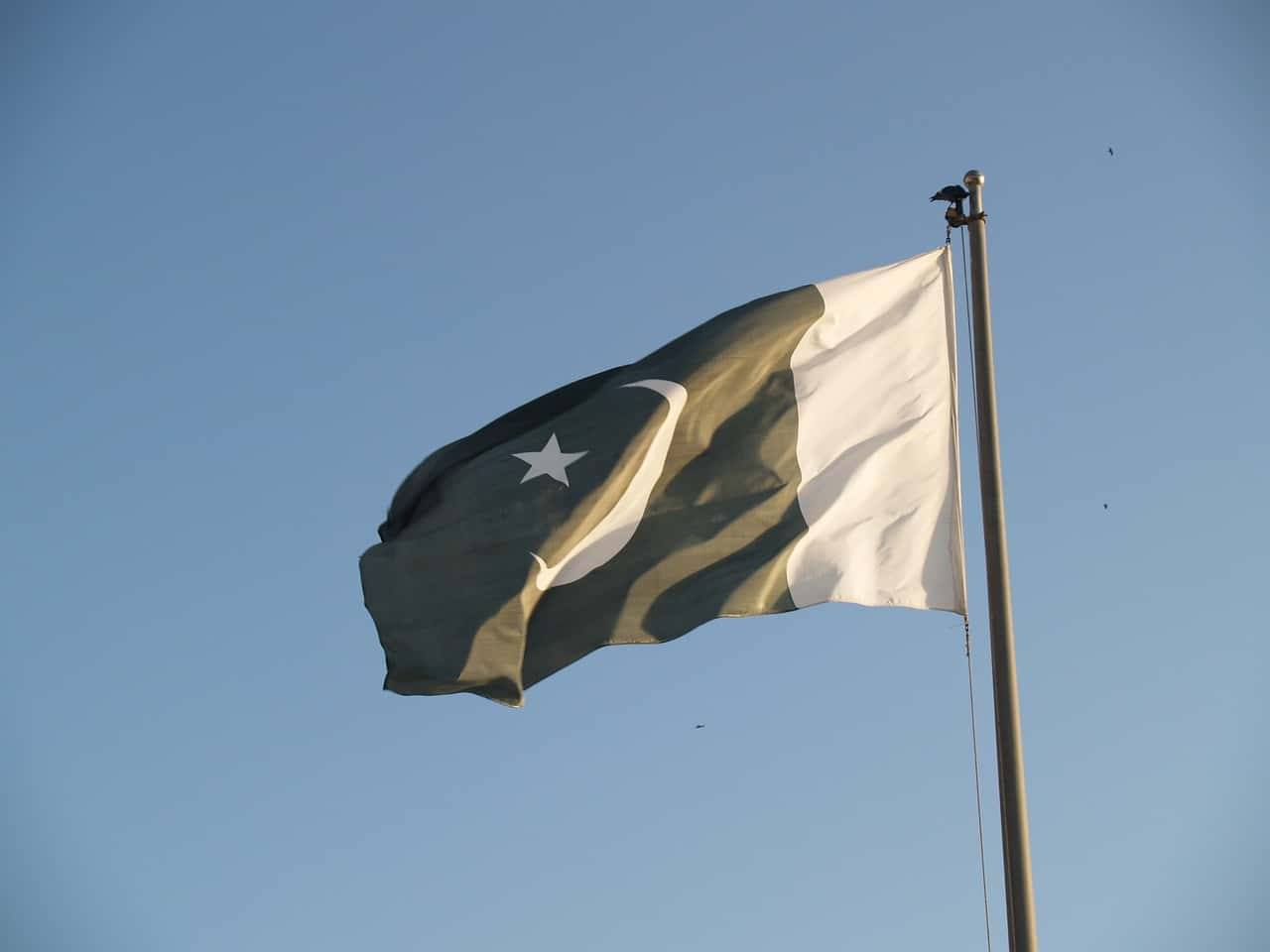 pakistan flag is the best toilet paper in the world