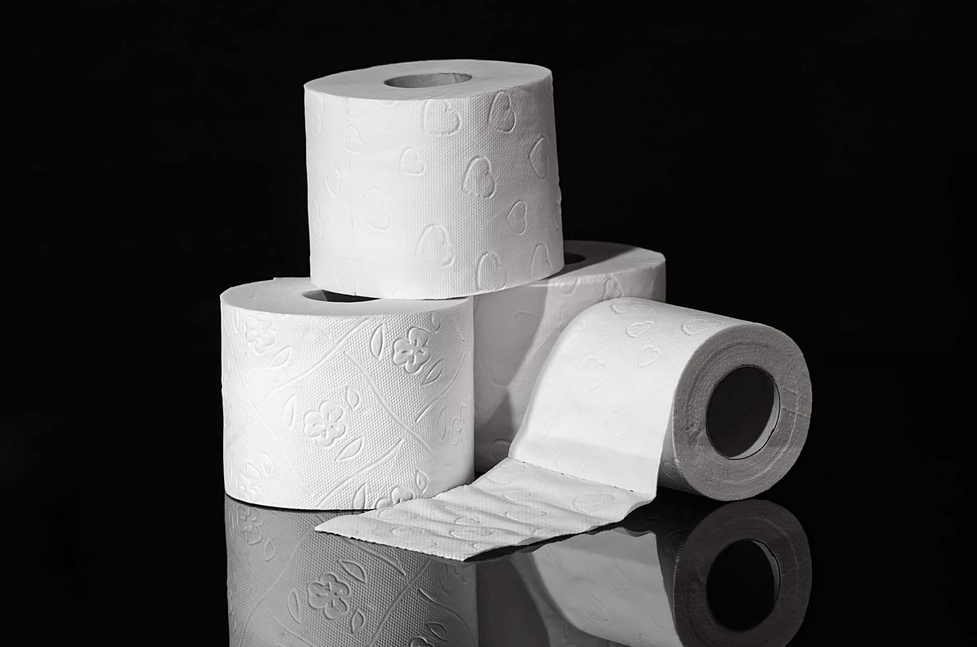 toilet paper facts