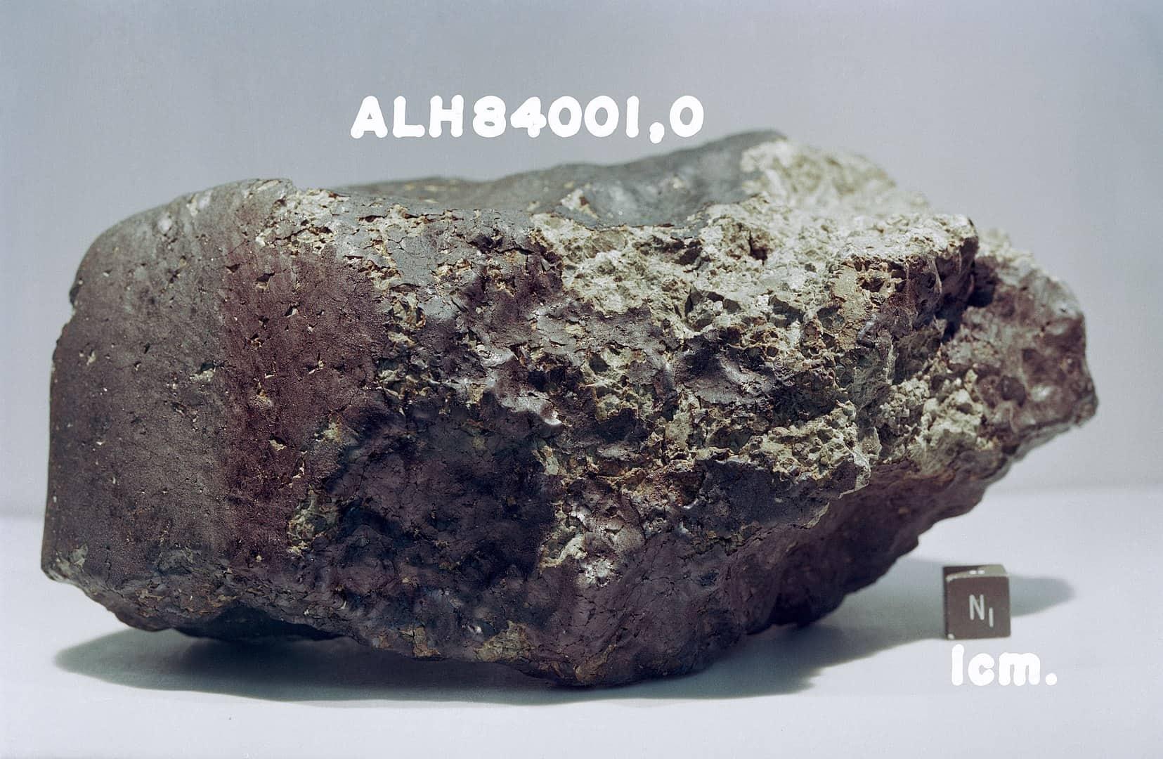 meteorite, antarctica facts
