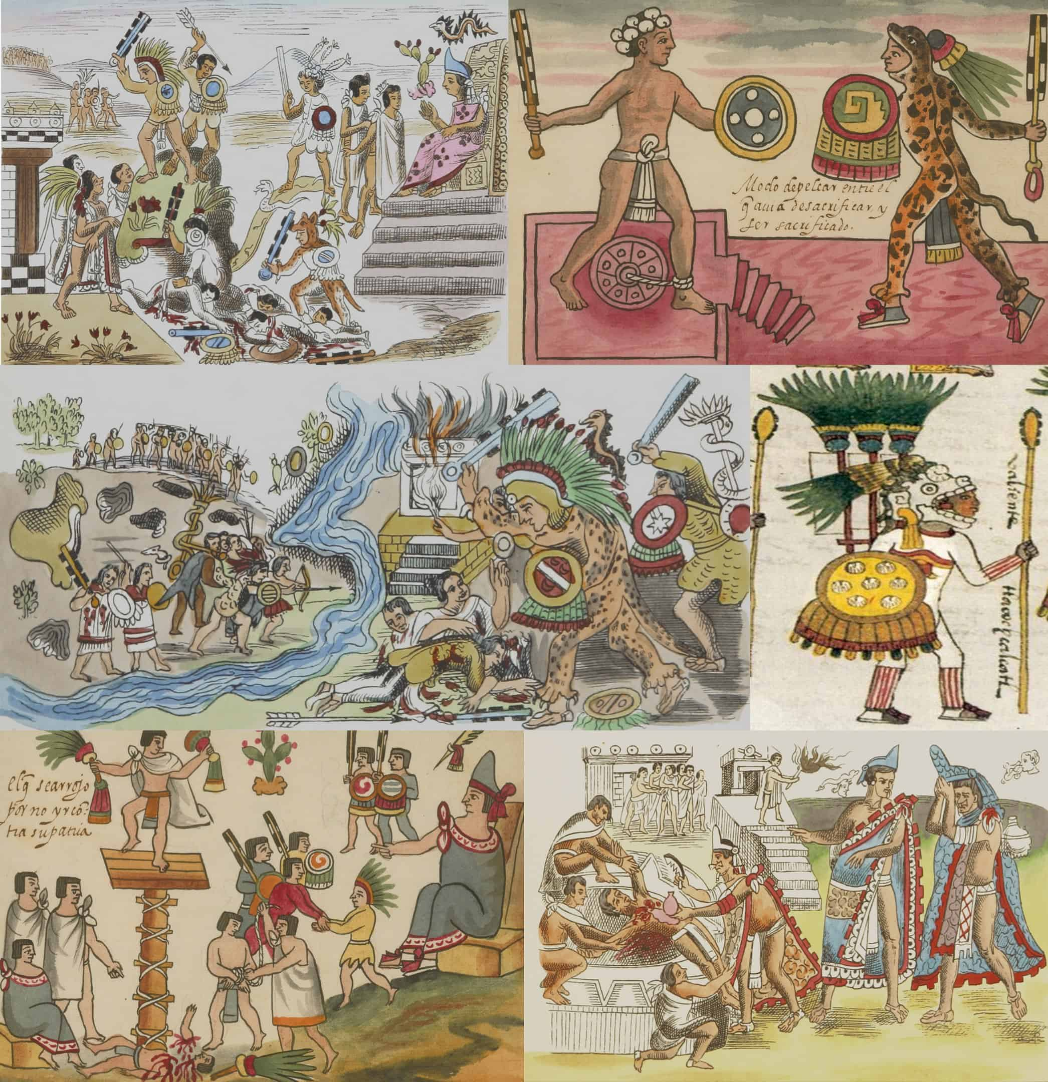 flower wars, aztec facts