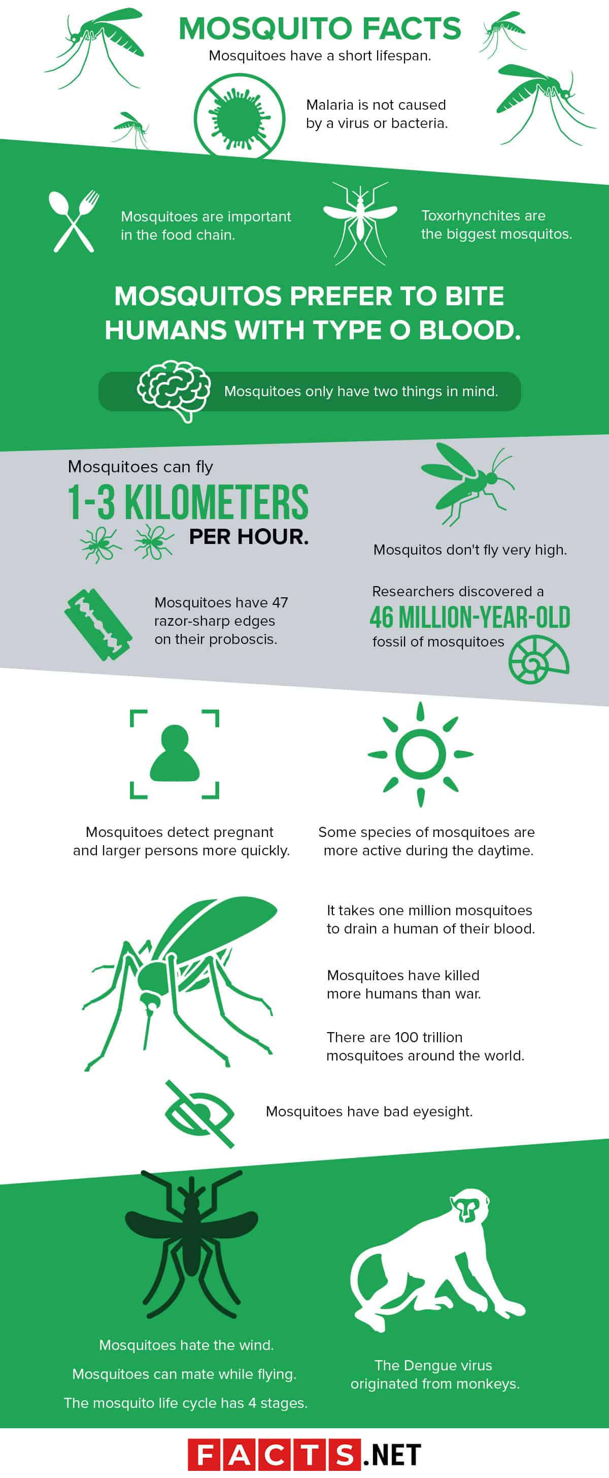 Mosquito Facts Infographics