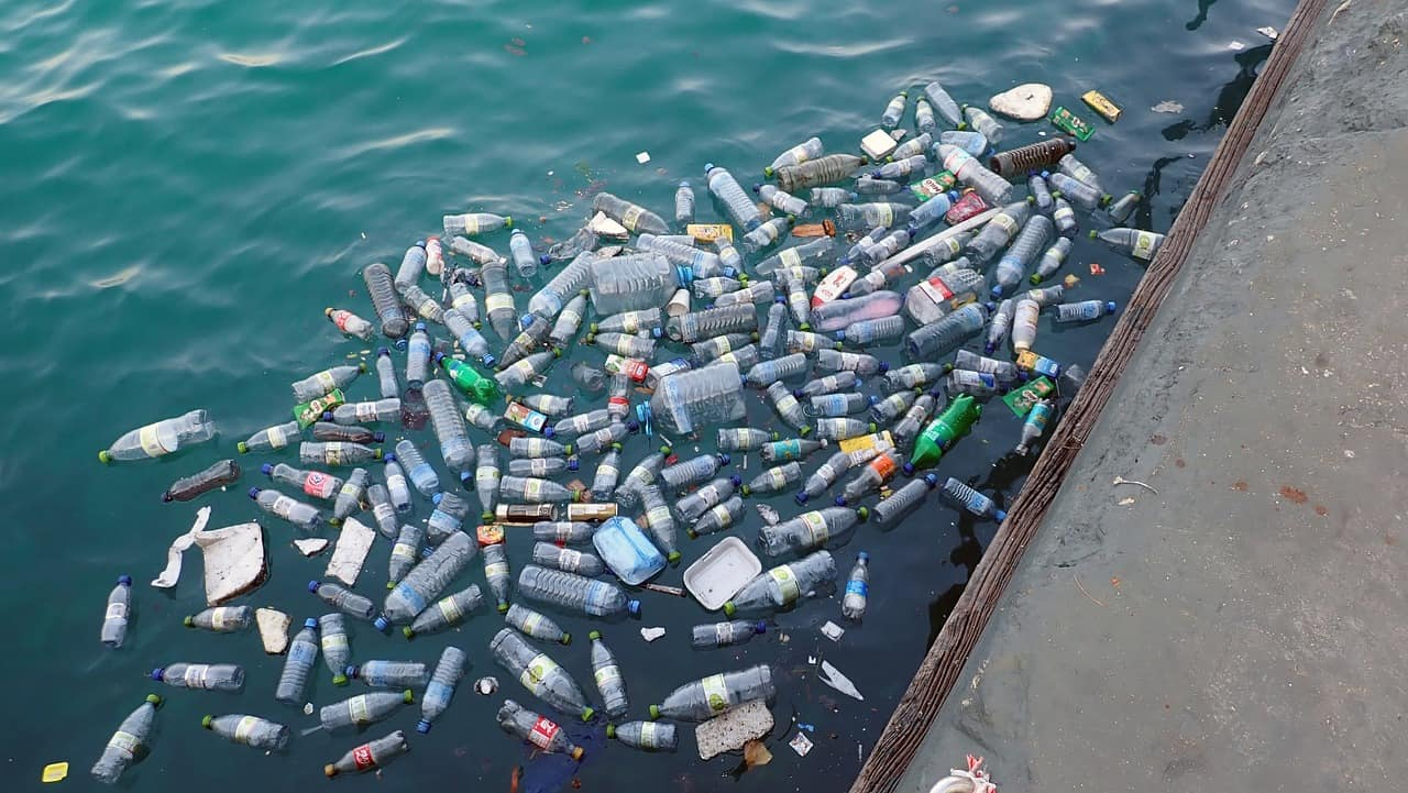 plastic in the Great Pacific Garbage Patch