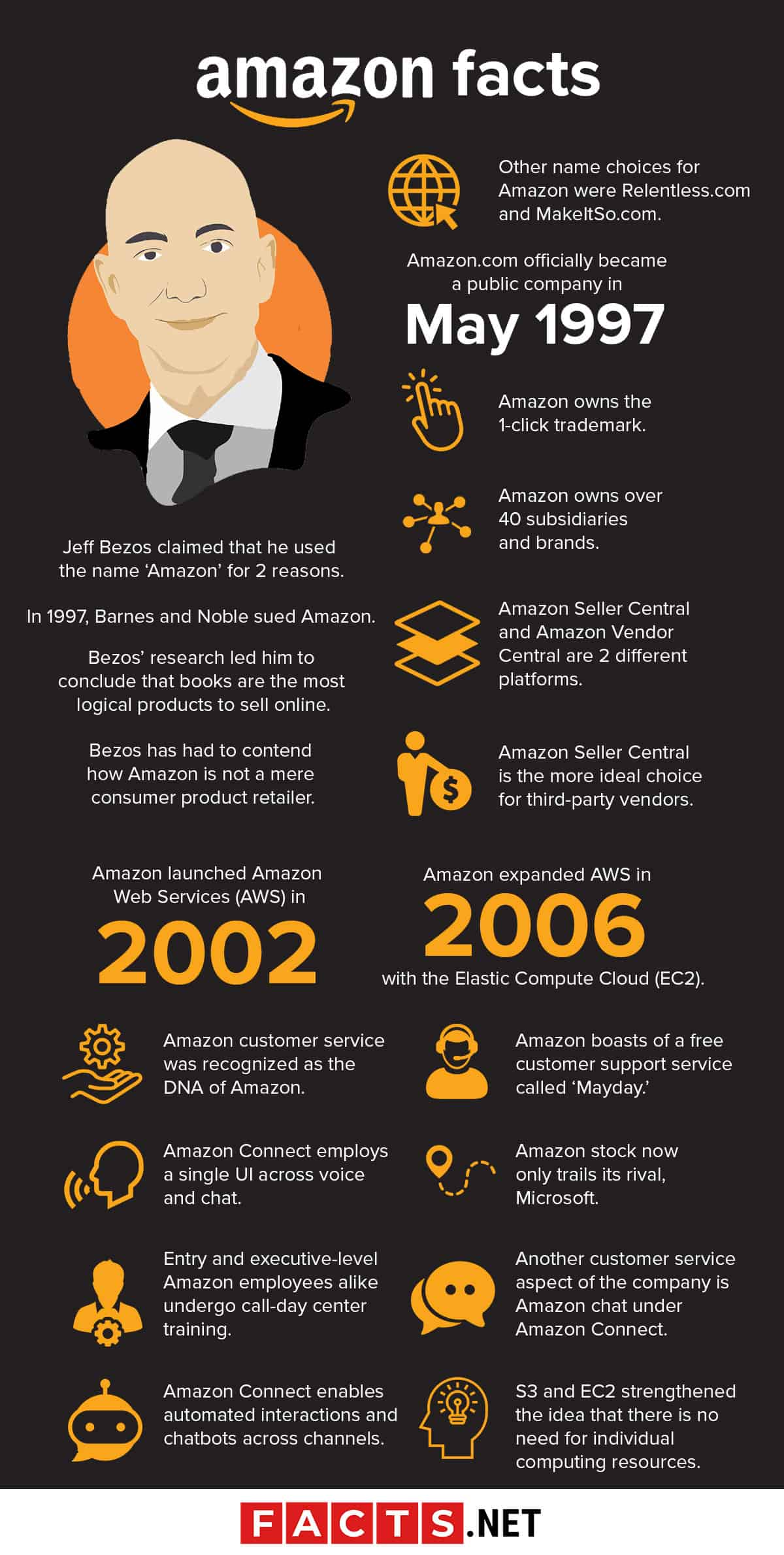 Amazon Facts Infographics