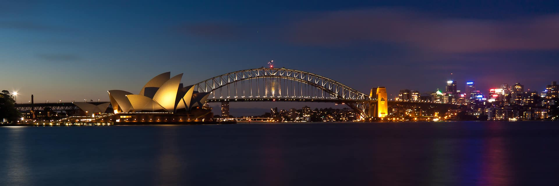 Bull Shark Facts, Sydney Harbour at night