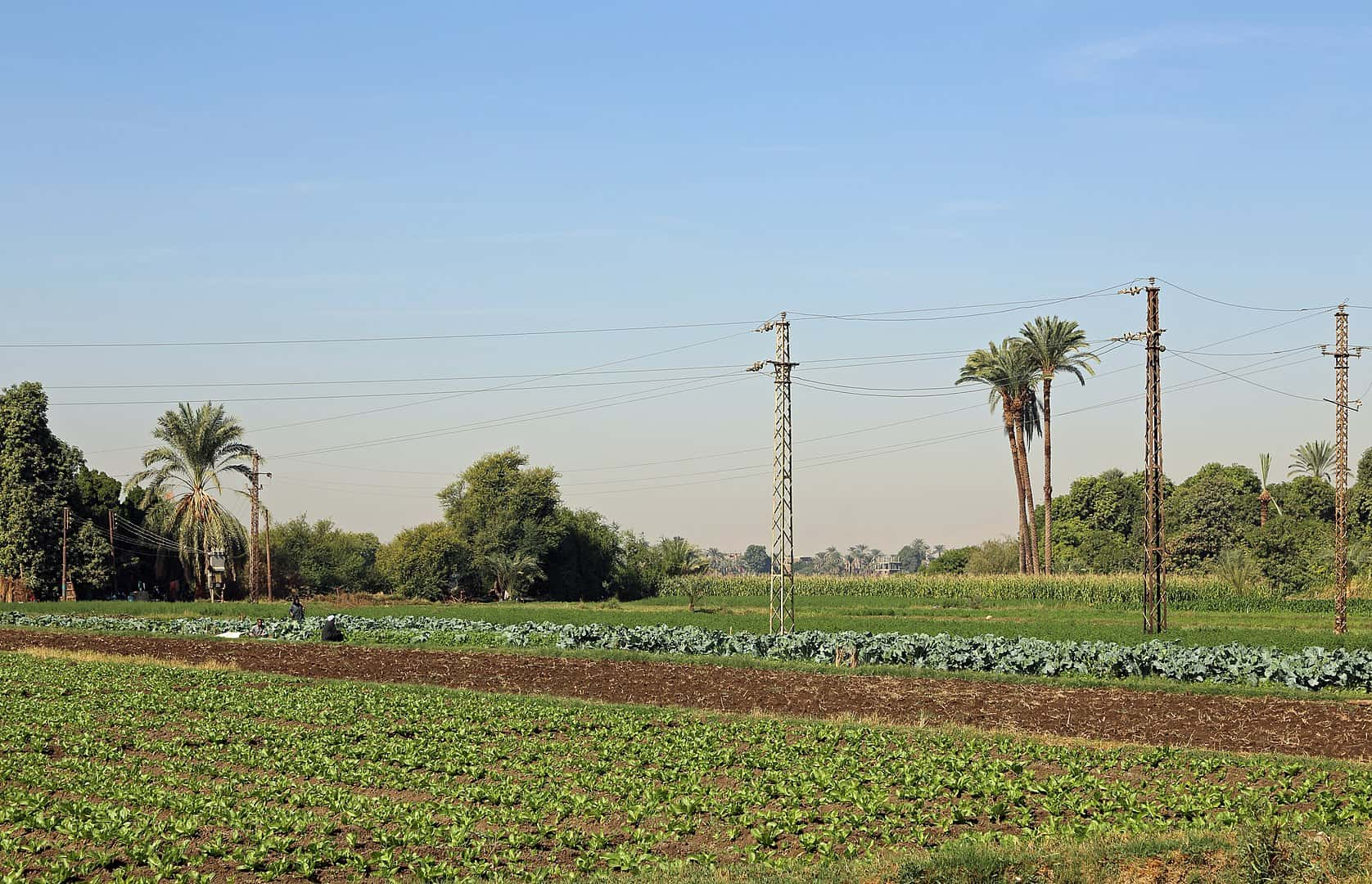 Facts about Egypt, power cables from Aswan