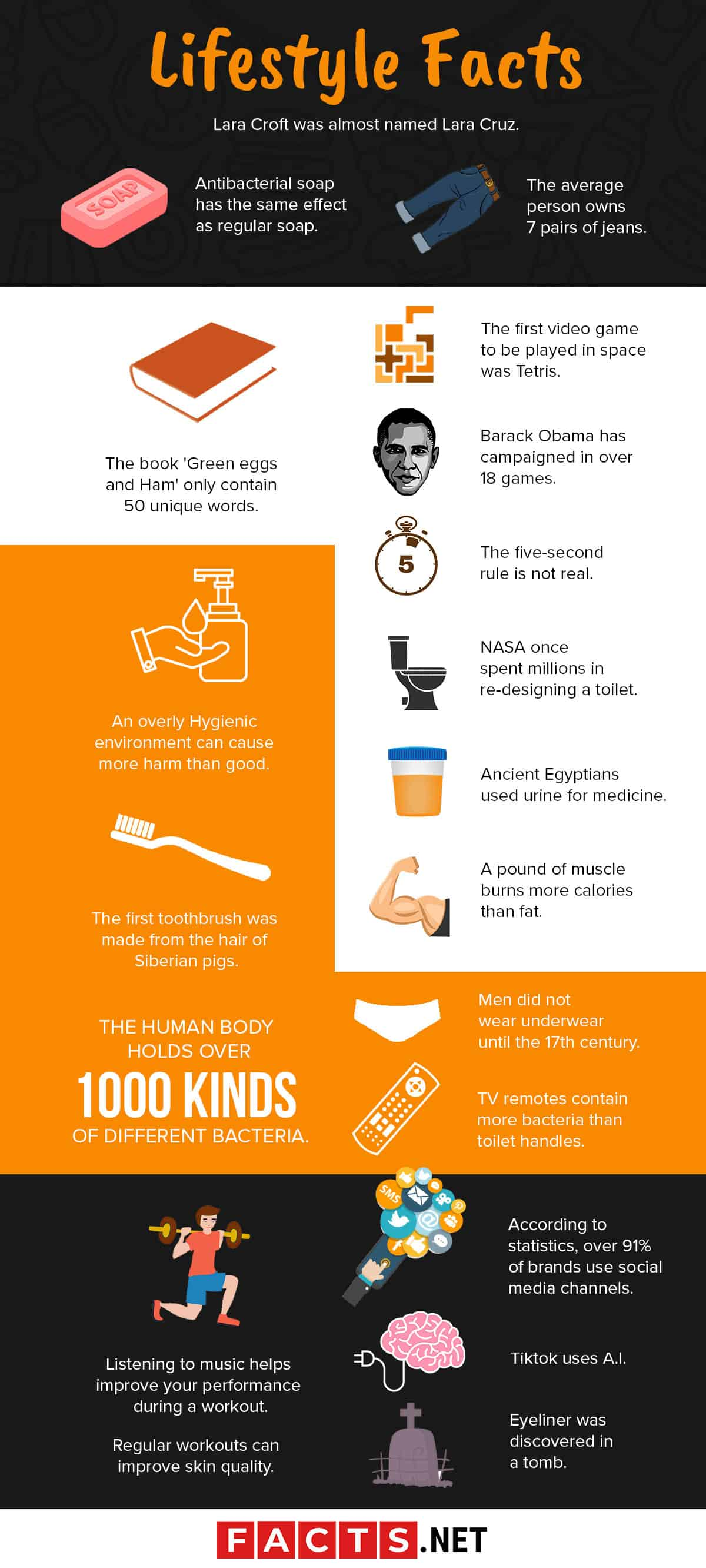 Lifestyle Facts Infographics
