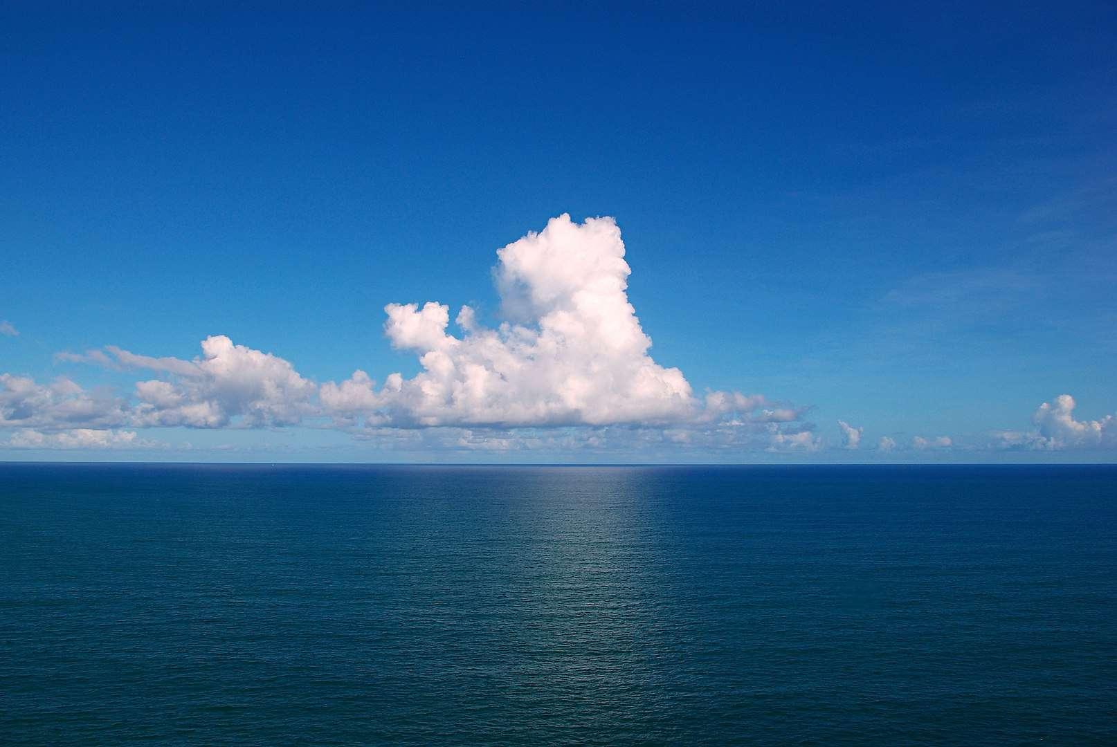 Fish Facts, Atlantic Ocean