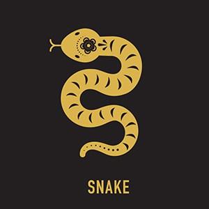 Chinese zodiac, Snake