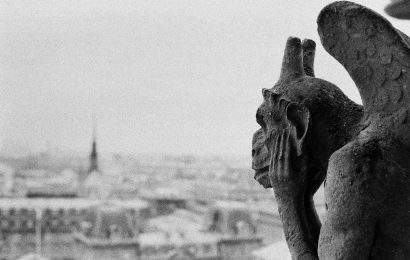 Facts About Gargoyles