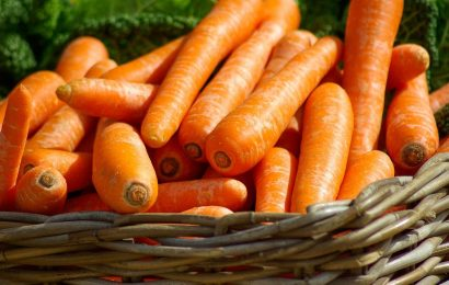 Carrot Facts, Carrots
