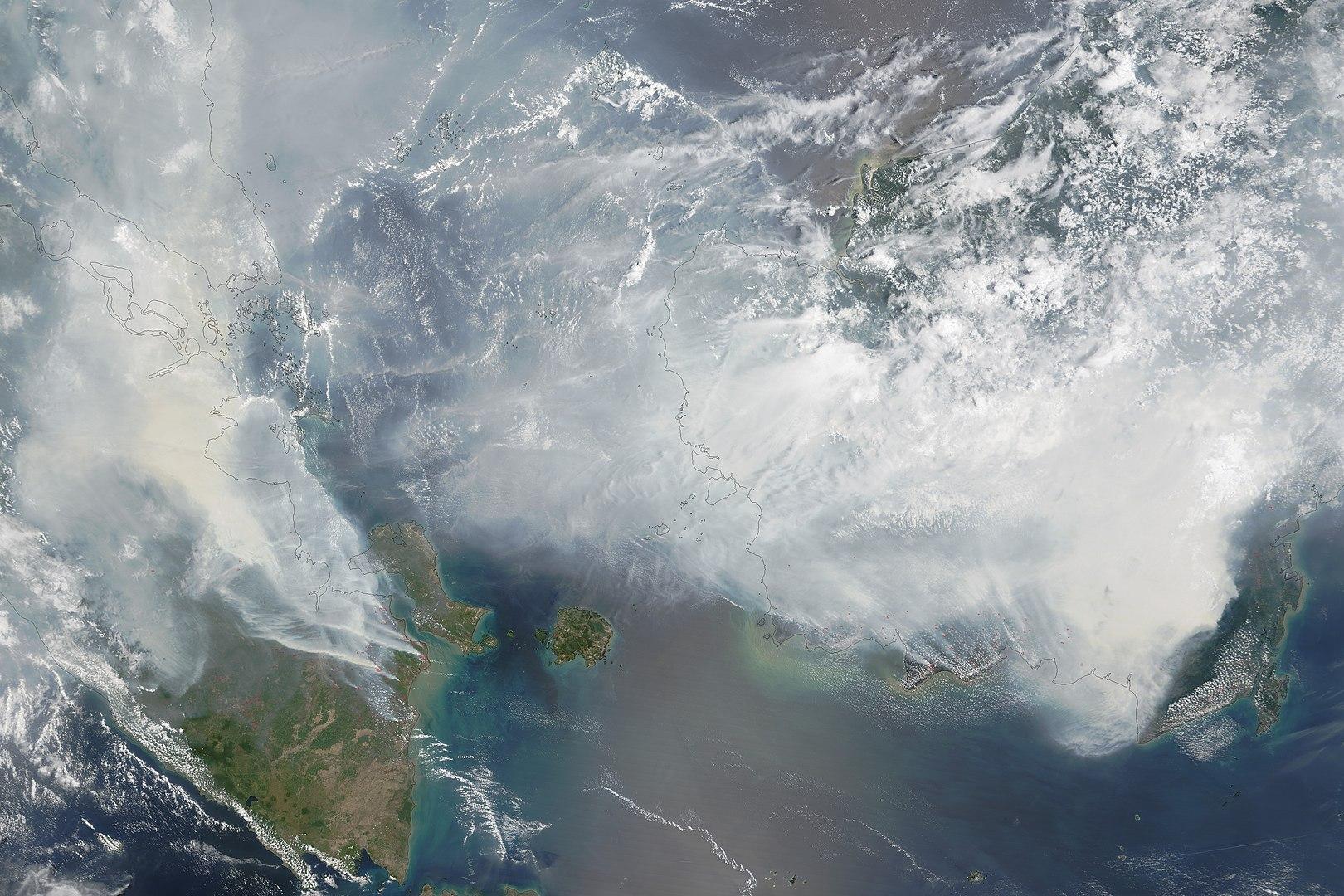 Palm Oil Facts, 2015 Southeast Asian Haze