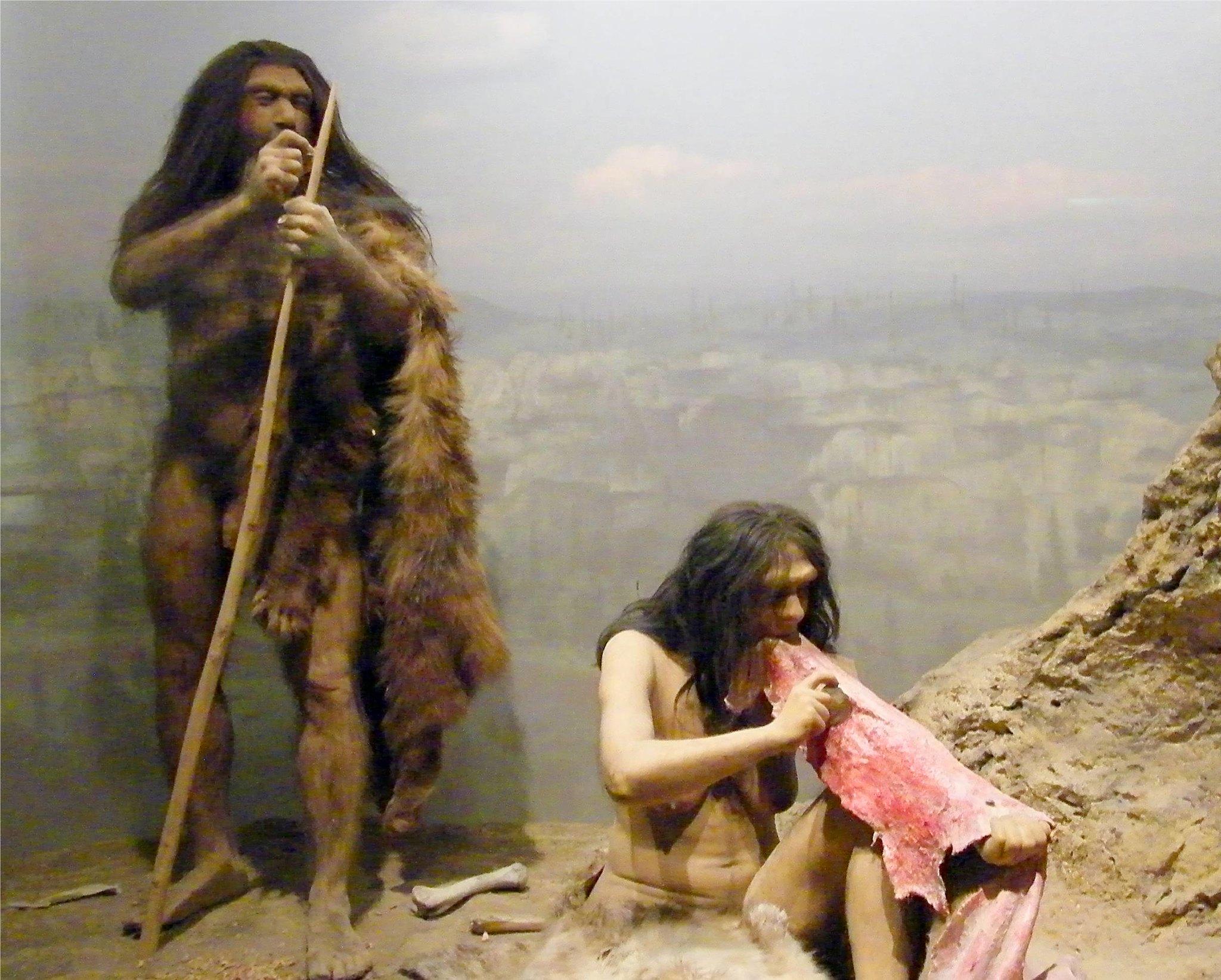 Neanderthal Hunting, Neanderthal Diet
