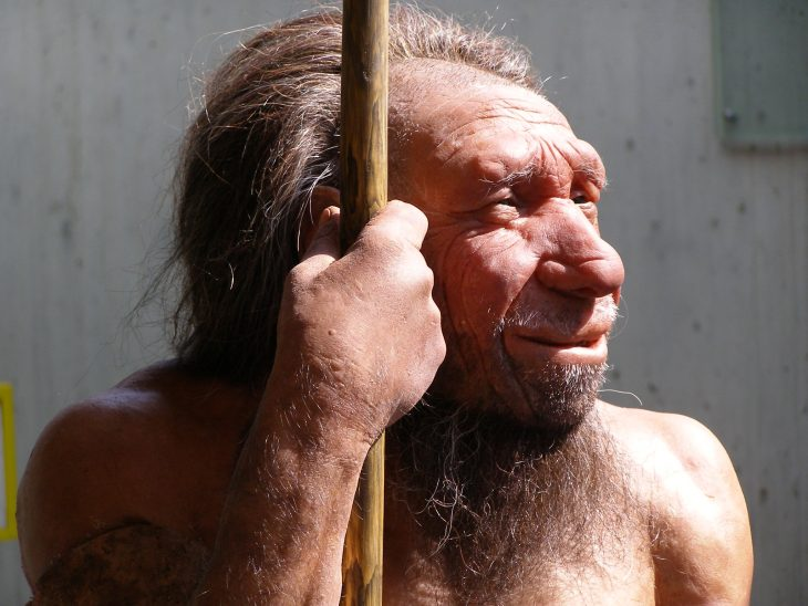 Neanderthal Man, Neanderthal, Homo neanderthalensis, Neanderthal Facts