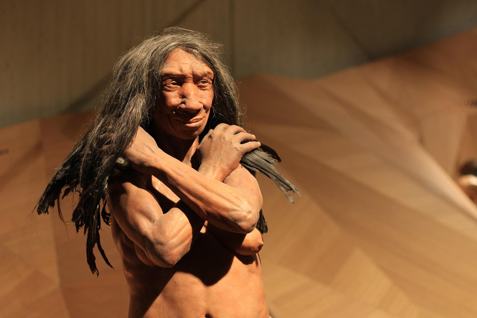 Neanderthal Tools, Neanderthal Tool Use